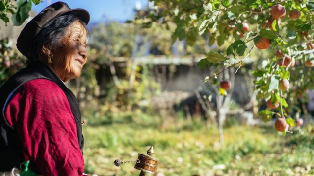Rural farmer smiles under her apple tree