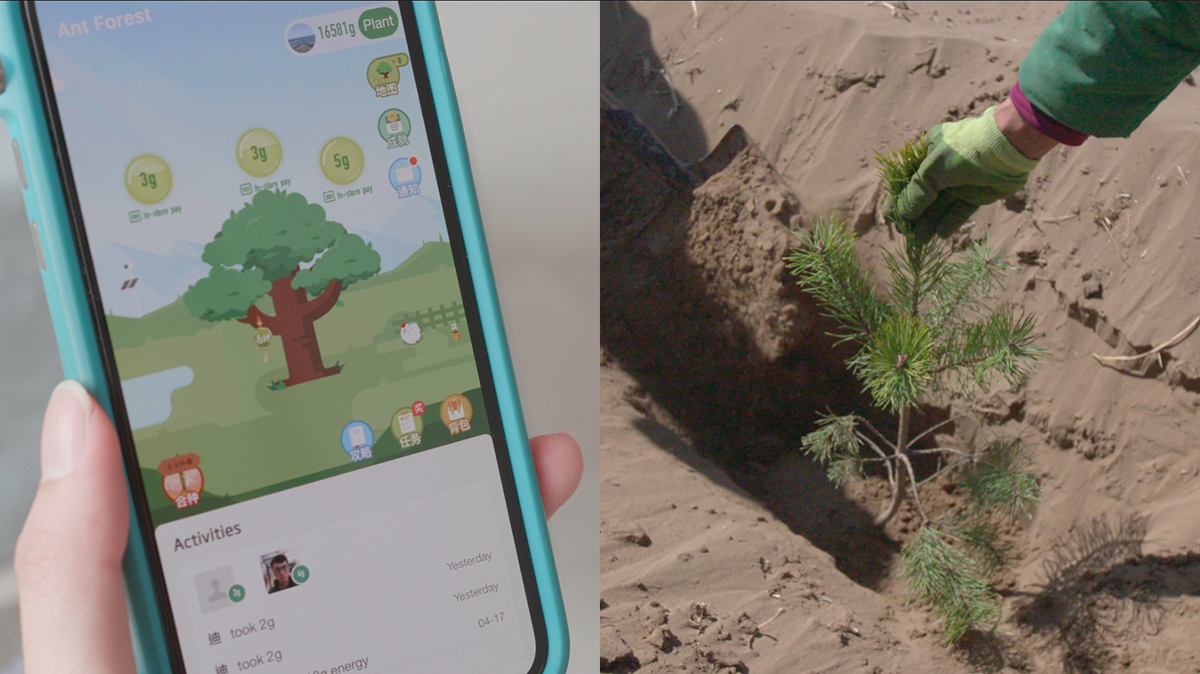 Alipay's 'Ant Forest' Makes Going Green Fun